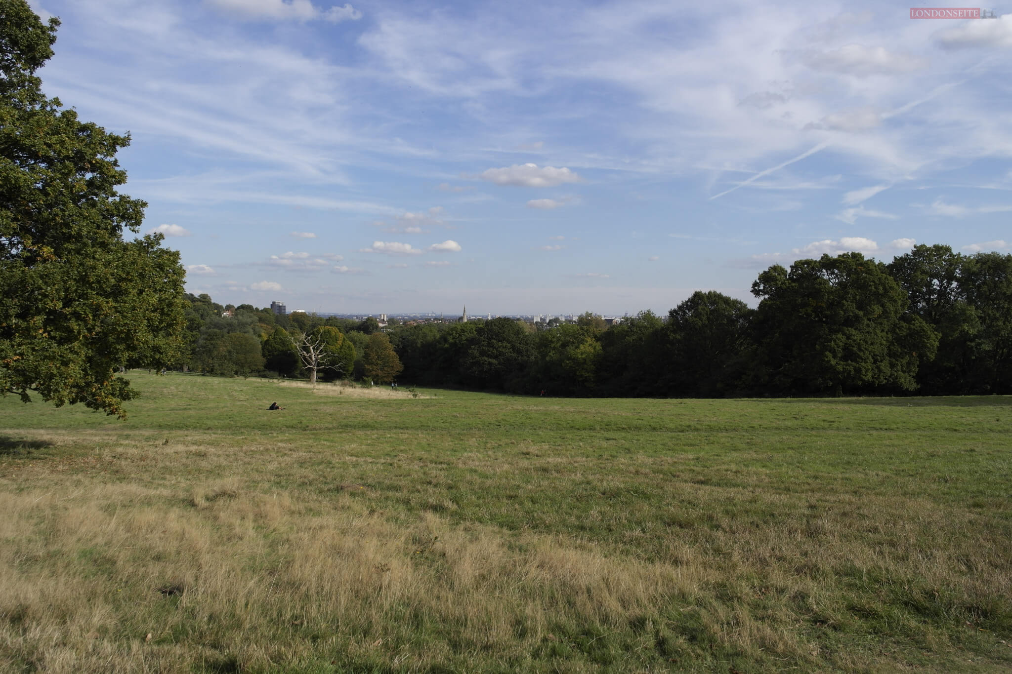 Heide von Hampstead Heath